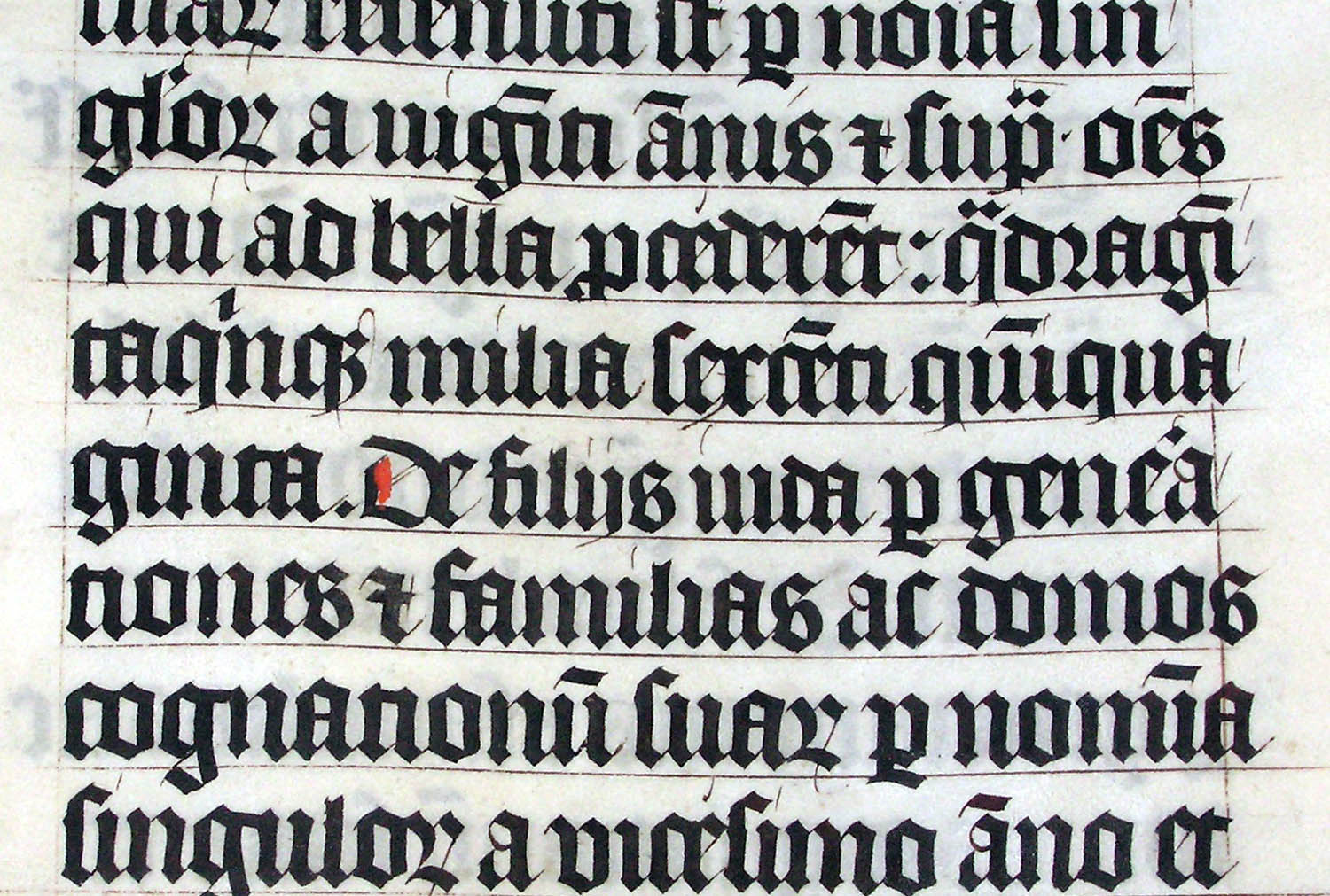 A hand-lettered Latin Bible from 1407. Unsurprisingly, aspiring Bible owners were not encouraged to do their own calligraphy. Adrian Pingstone, 2005 (Public Domain)