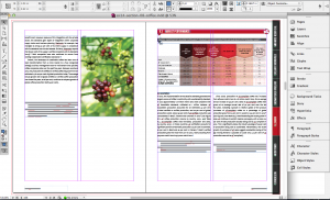 After the initial templates and process were laid out, it was a matter of gathering the pieces in InDesign. © Talk Science to Me 2014