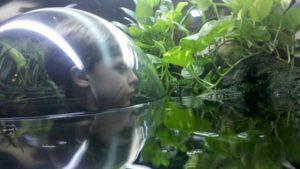 boy looking at frog